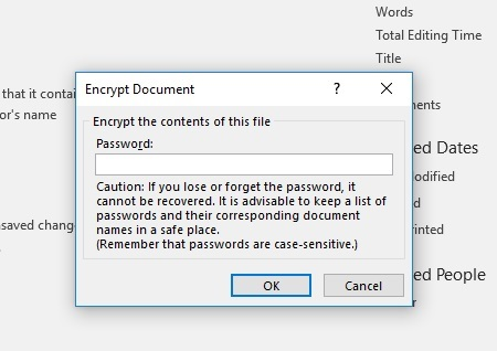 MSWord document encryption