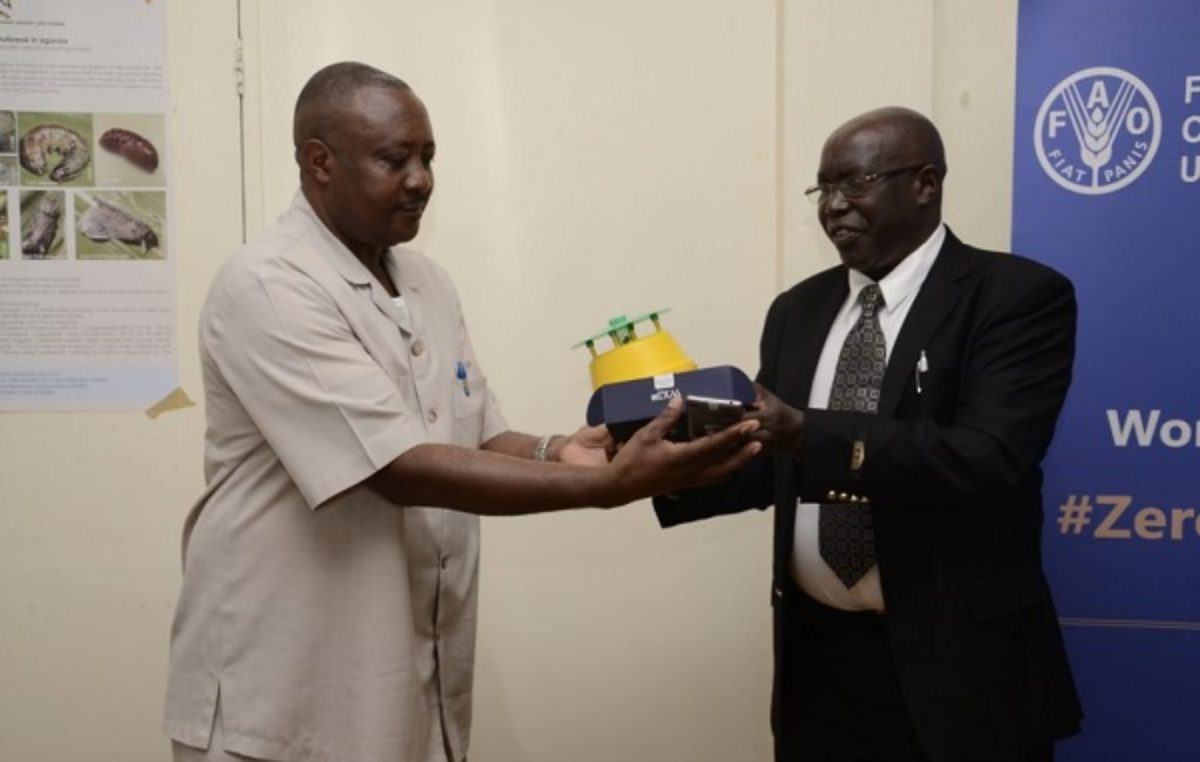 Ugandan govt, FAO roll out app to boost fight against Fall Armyworm