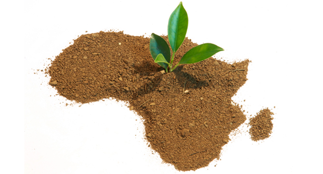 Impulse startup accelerator SoGal Global pitch competition African startup founders