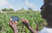 American firm to help Ugandan farmers get health insurance via phone app