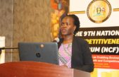 UDB's Onjagole to startups: Always seek counsel from seasoned entrepreneurs