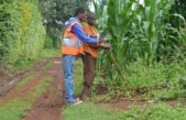 Poa! Internet rolls out public WiFi to rural communities in Kenya